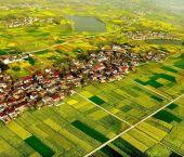 美丽中国:俯瞰陕西汉中油菜花海
