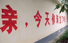 """【视觉】哪些企业爱在农村""""刷墙""""?"""