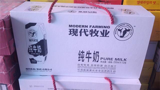 现代牧业病牛被匆匆毁尸灭迹 金牌牛奶招牌恐不保