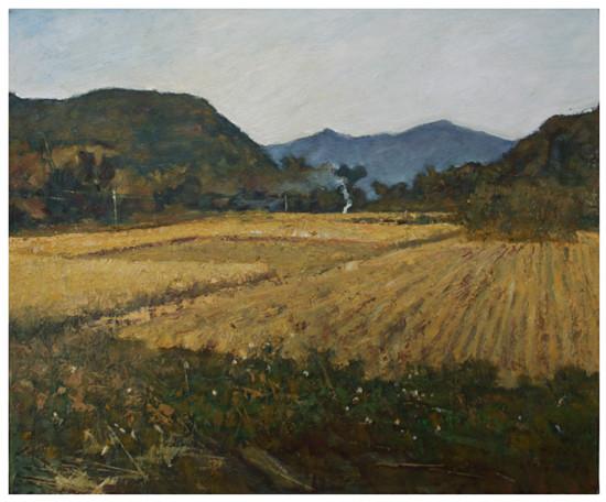 遍野稻香(油画)50-60cm2014