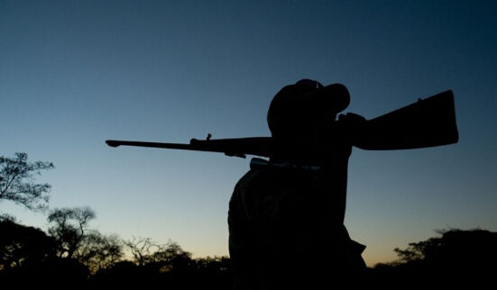 P70-2 津巴布韦是狩猎者的理想之地,因为当地需要依靠狩猎增加经济收入。在当地狩猎每日需交费1000美元,每猎捕一头大象需额外交费1.1万美元。