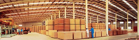 p19+上思华林中纤板厂