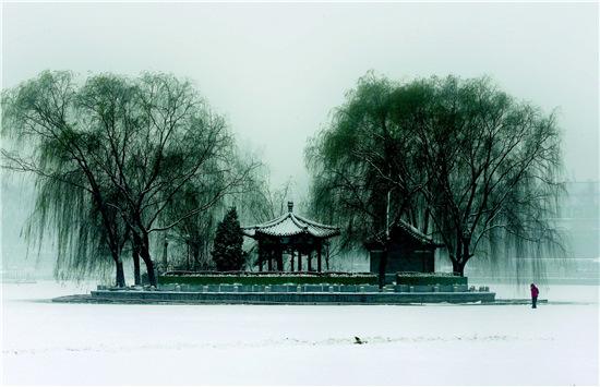 """11月22日,微信朋友圈被北京雪景刷屏,许多人感慨""""一场大雪让北京变成了北平""""。其实,大雪对于北京这个超大城市而言,更是一次严峻的考验。"""