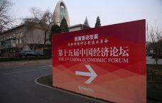 第十五届中国经济论坛精彩图片