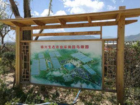 农庄水电设计图