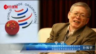 """专访""""中国首任驻WTO大使""""孙振宇"""