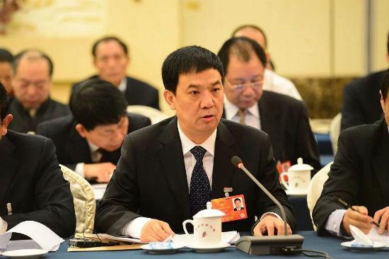 张龙安在河南代表团分组讨论中发言