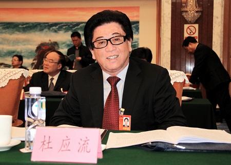 全国人大代表、安徽应流集团董事长杜应流。