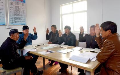 p79-嵩县城关镇菜园村党员在党小组会议上举手表决通过相关事项。摄影张利兵