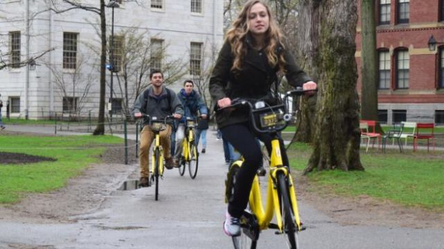 """单车""""出海"""":中国式创新能否""""骑""""向世界?"""