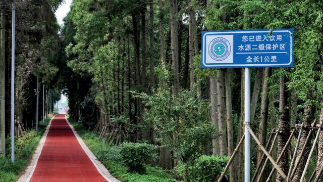 """""""双绿""""时代的上海郊野公园"""