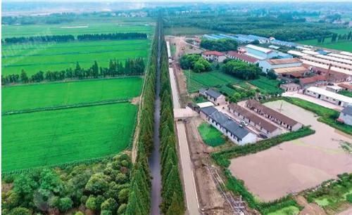 63 图中水渠将被改建为公路,但水渠与公路之间的树木将被保留。《中国经济周刊》摄影记者 胡巍 摄