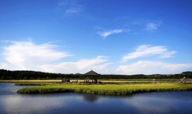 "p40-▲塞罕坝位于河北省承德市围场满族蒙古族自治县境内,目前已成为著名的生态旅游景区,被誉为""河的源头、云的故乡、花的世界、林的海洋""。"