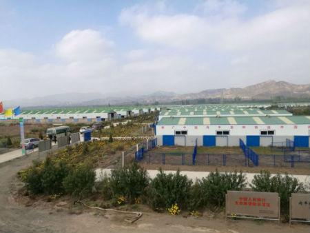 鑫源公司养殖基地。摄影 李开南