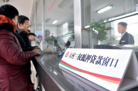 """p53-农商行拥有更多""""私有""""信息,成了""""熟人信贷""""的受益者。不过,这种高龙8国际在线真人娱乐集中度和高行业集中度带来的风险也不容忽视。视觉中国"""