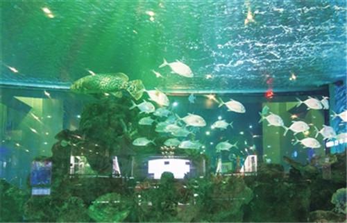 鎏嘉码头水族馆