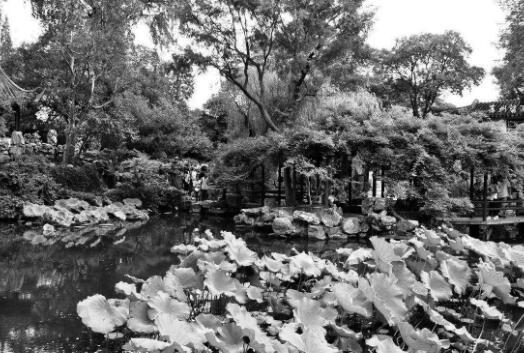 """p91-回顾中国历史上著名的园林,俗语说""""江南园林甲全国,苏州园林甲江南""""。苏州园林造园图景摹仿自然,以自然山水为主题,因地制宜地利用人工去仿造自然景致,沿阜垒山,洼地建池,巧建亭榭,点缀树木,讲求诗情画意。"""