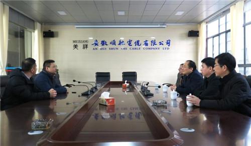 桐城市政府市长陆应平(右三)一行在顺驰电缆公司调研企业生产经营情况。