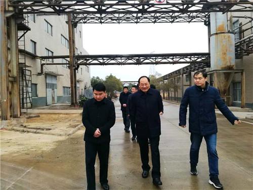 桐城市政府市长陆应平(中)在市经济技术开发区丹凤集团走访调研。