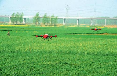 P21-在凤台县刘集镇山口村,专业植保服务队操作无人机进行小麦赤霉病防治。视觉中国
