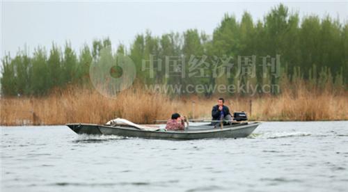 """20-3 未来白洋淀将逐步恢复它""""华北之肾""""的功能。《中国经济周刊》摄影记者 胡巍 摄"""