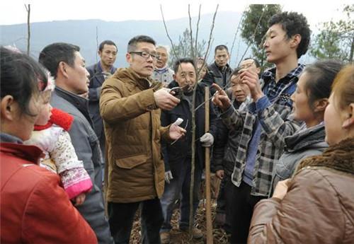2  传授皂角树改良技术