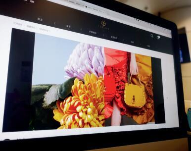 p73- 图为奢侈品电商 toplife 官网购物展示页面。视觉中国