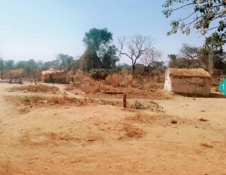 p84-道路旁刚果 ( 金 ) 底层人群的居所