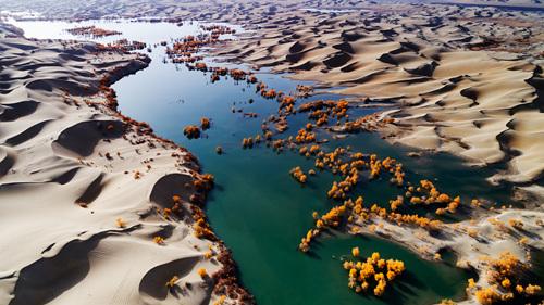 40 塔里木河流域,大部分在沙漠当中,河水流过,胡杨顽强地生长。