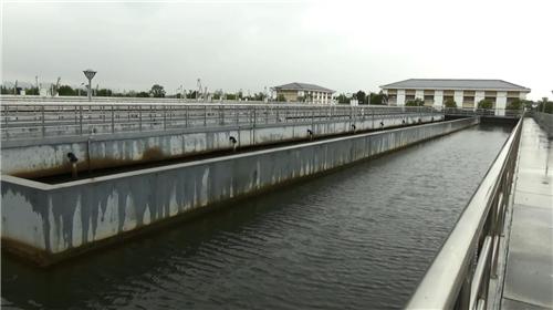 城东污水处理厂生化池基本没有污泥