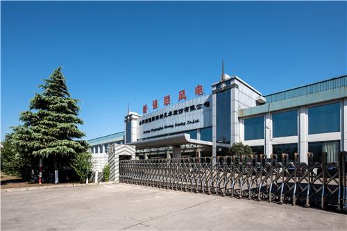 6  洛阳新强联回转支承股份有限公司