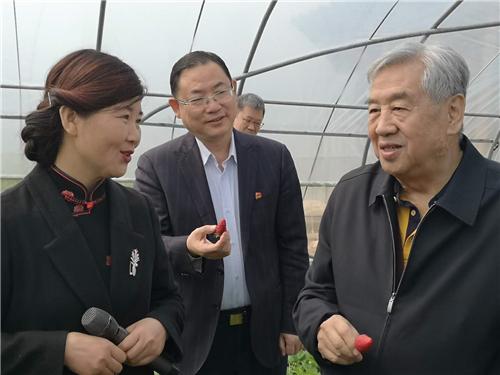 1原全国政协副主席李蒙到孟津县调研乡村振兴工作