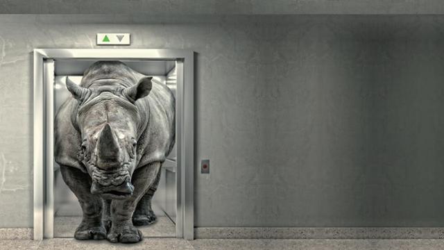 警惕灰犀牛!房企迎偿债高峰,超15万亿债务会压垮谁?