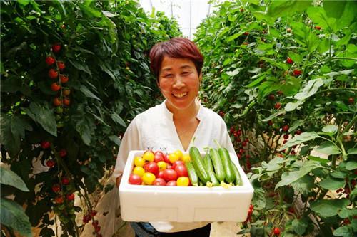 5____高效农业