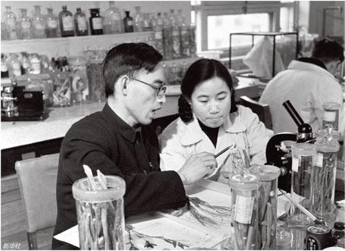 p5020 世纪50 年代,屠呦呦(前右)与老师楼之岑一起研究中药。