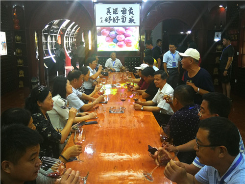 来宾参观农业观光体验旅游景点黄家葡萄酒庄(姚玉龙摄)