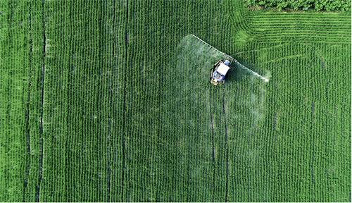 p212 2018 年7 月30 日,江蘇省海安市城東鎮石莊村遠大家庭農場,農民駕駛自走式噴桿噴霧機在稻田里噴灑農藥。視覺中國