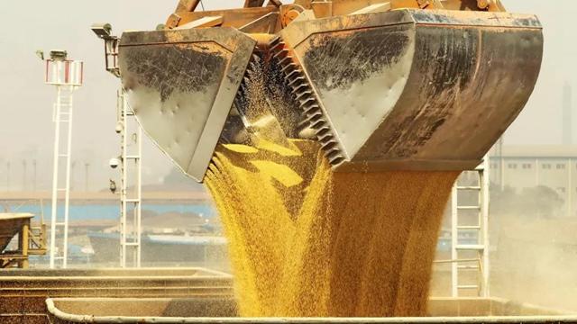 今年中企在美国买了多少农产品?外交部给出了一组数据