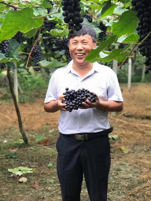 """2016年7月22日,湖南湘西大坡村在""""为村""""平台发出了第一条村庄新闻头条。"""