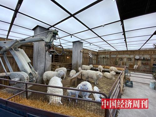 """The Future Farm""(未来农场)"