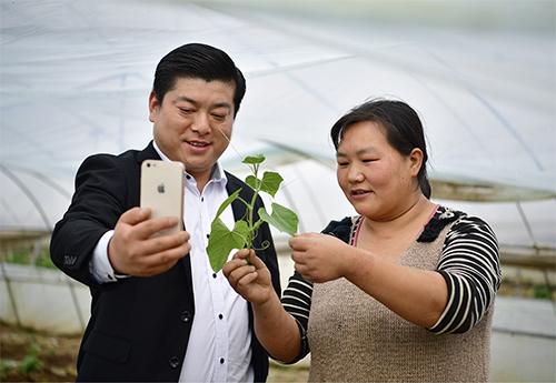"""p32 """"網紅""""農民翟文波在大棚內與村民王艷梅一起手機直播,講解龍須菜的食用部位。"""