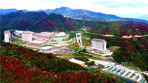 金徽矿业。