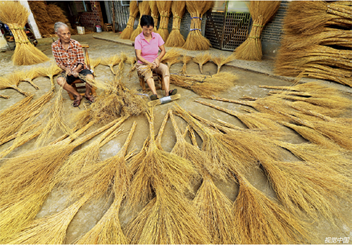33 在江西省吉安市泰和县澄江镇杏岭村,农民利用晒干压瘪的扫帚草在编扎扫帚,变草为宝,助力脱贫攻坚。