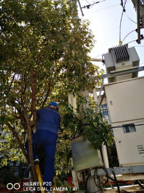 陕西地电:佛坪分公司开启高温模