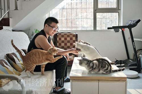 52 家铭和他的7只猫