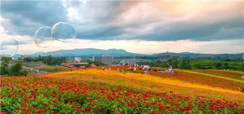 2021陕西省各县区gdp_神木人均存款第一!2021百强县+陕西77县31区GDP排名!